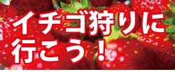 143644.banner_1