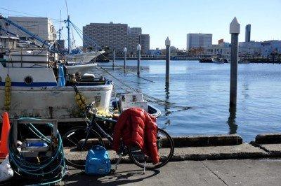 船橋漁港の朝